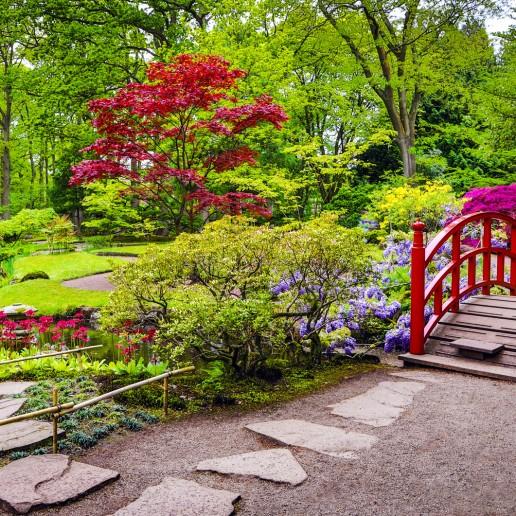 Traditional Japanese Garden Landscape